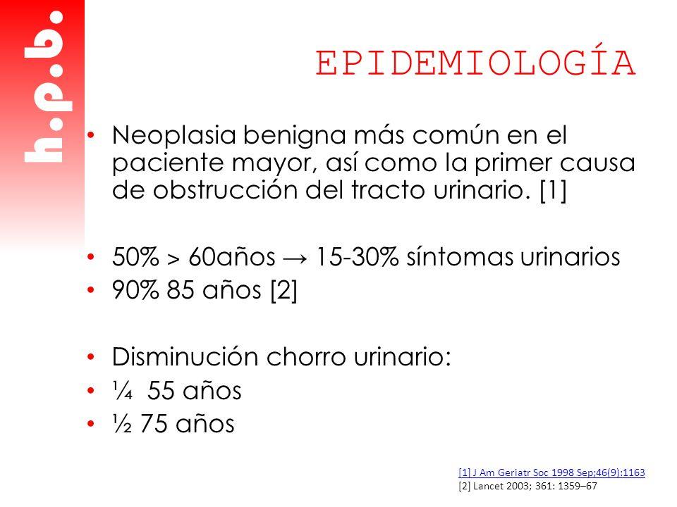 EPIDEMIOLOGÍA Neoplasia benigna más común en el paciente mayor, así como la primer causa de obstrucción del tracto urinario. [1]